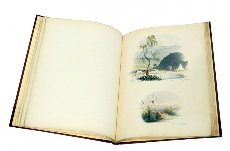 SOUTH AFRICAN SKETCHES:; Illustrative of the Wild Life of a Hunter on the Frontier of the Cape Colony. Butler Capt. H.