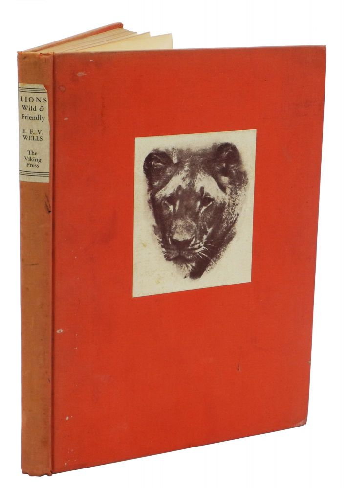 LIONS WILD AND FRIENDLY; Presenting the King of Beasts as a Companion and an Interesting Subject for Photography in His Natural Habitat. The Anecdotes of One Who has Reared Lions as a Hobby. Wells E. F. V.