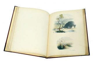 SOUTH AFRICAN SKETCHES:; Illustrative of the Wild Life of a Hunter on the Frontier of the Cape...